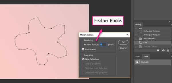 گزینه Feather Radius